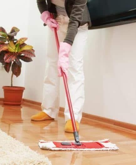 Cera per parquet velurex polish wt parquet armony floor for Cera per parquet
